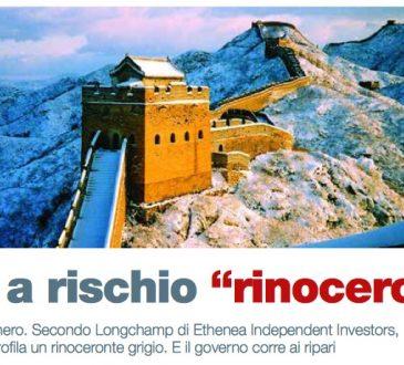 "Cina a rischio ""rinoceronte"" (di Lele Riani)"